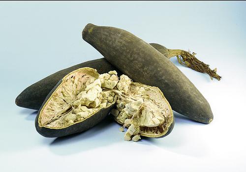 Frutti del Baobab by Pascal Baobab